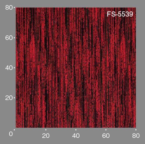 FS5539