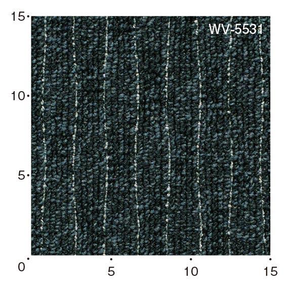 WV5531
