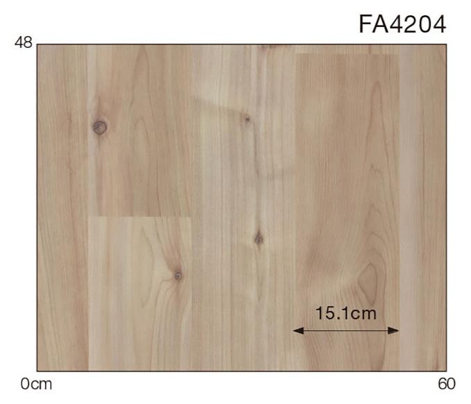 FA4204