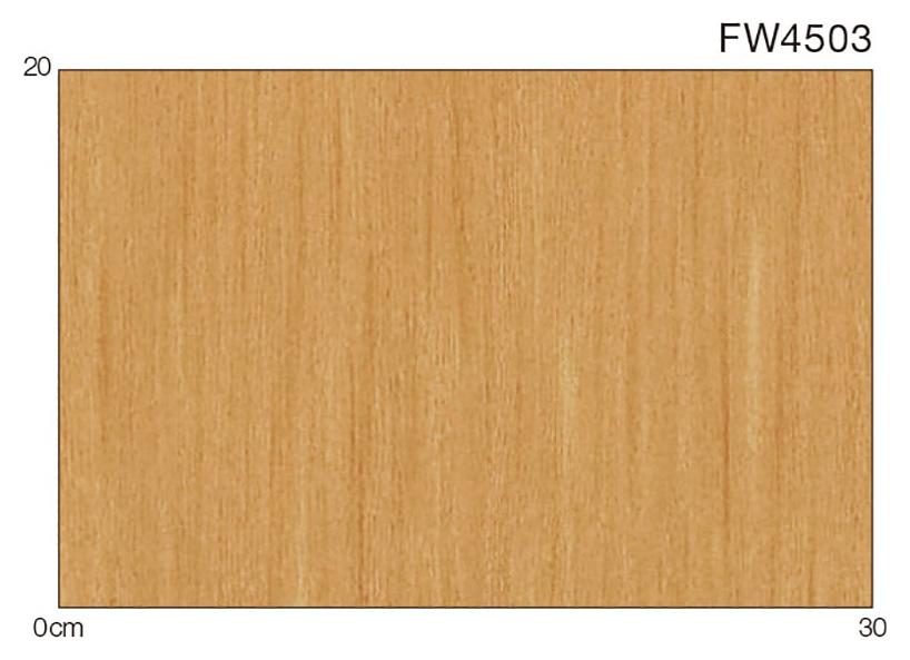 FW4503
