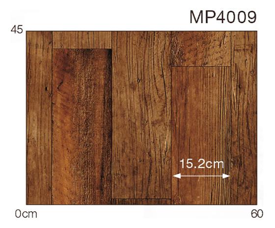 MP4009