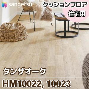 HM10022_10023