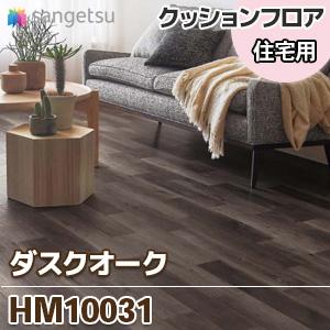 HM10031