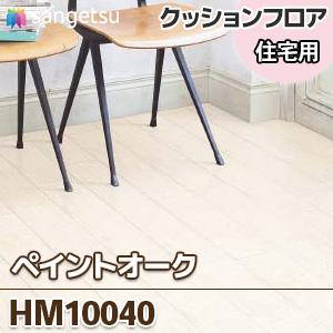 HM10040