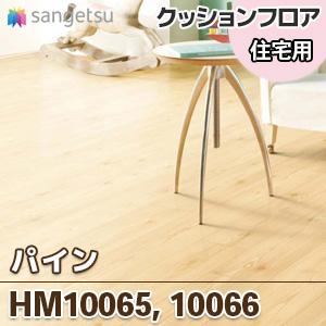 HM10065_10066