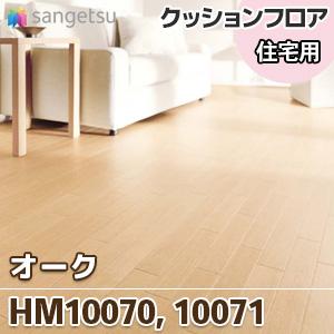 HM10070_10071
