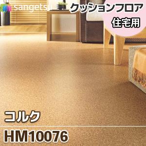 HM10076