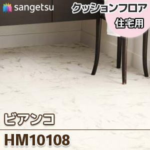 HM10108