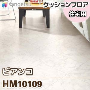 HM10109