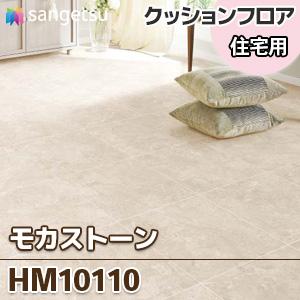 HM10110