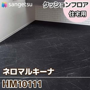 HM10111