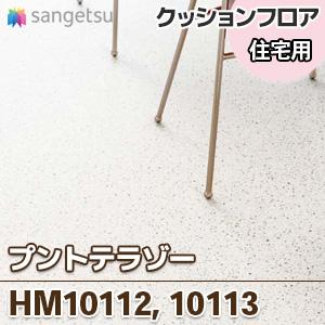 HM10112_10113