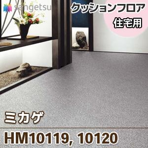 HM10119_10120