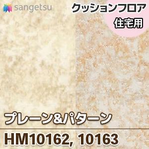 HM10162_10163