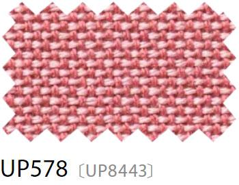 UP578