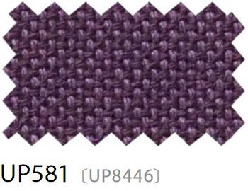 UP581