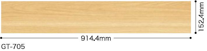 GT705サイズ