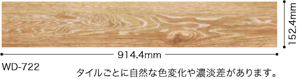 WD722サイズ