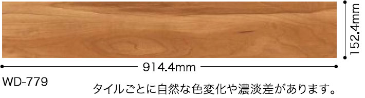WD779サイズ