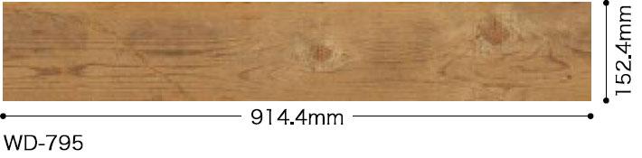 WD795サイズ