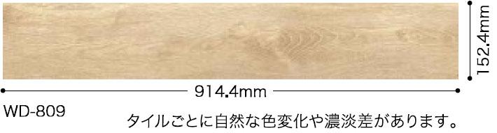 WD809サイズ