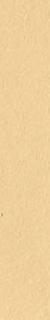 ソフト巾木:15番