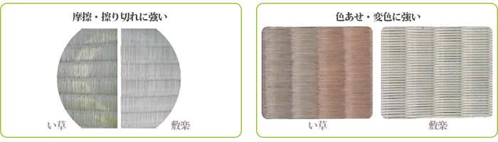 置き畳:彩美は変色につよい
