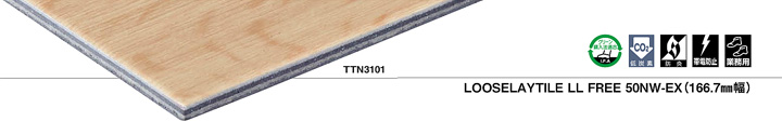 TTN3101