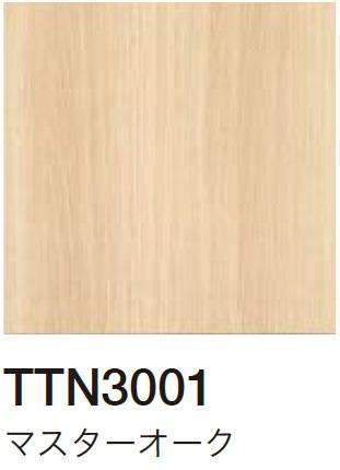 TTN3001 マスターオーク