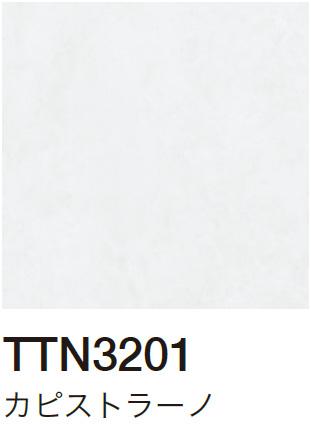 TTN3201 カピストラーノ
