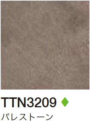 TTN3209 パレストーン