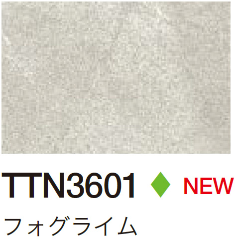 TTN3601 フォグライム