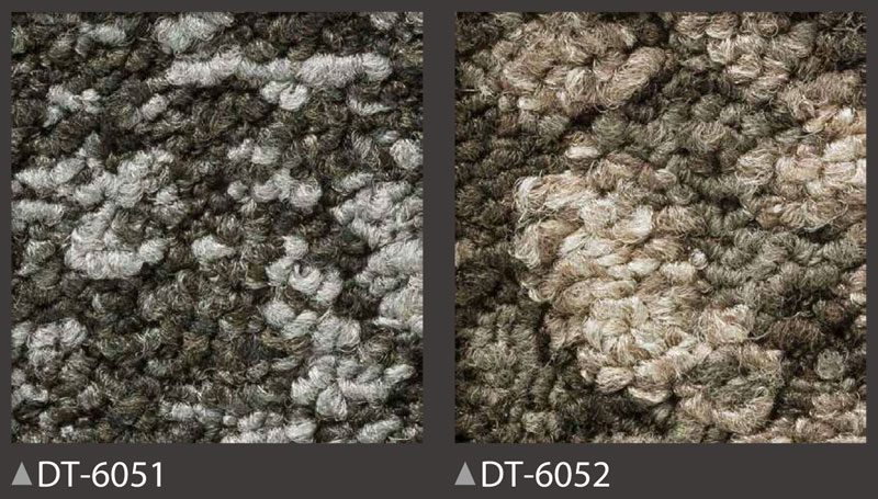 DT6050