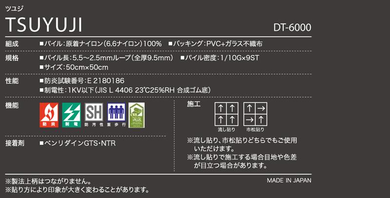 DT6000