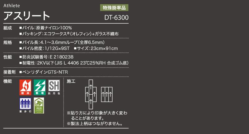 DT6300