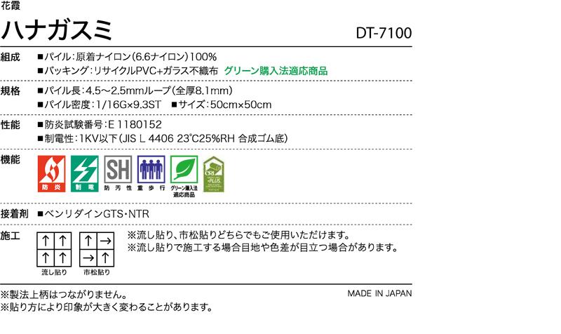 DT7100
