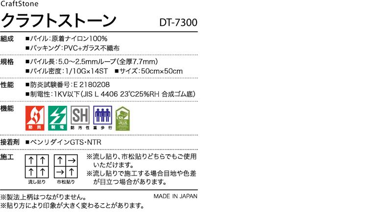 DT7300
