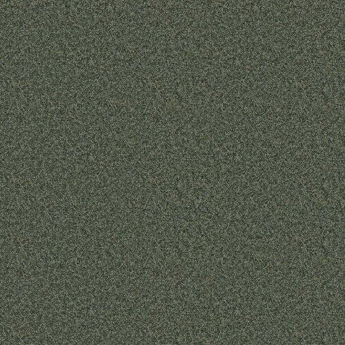 REG5205