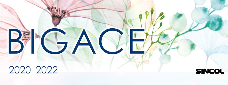 BIG ACE ビッグエース 2020-22 シンコール 壁紙