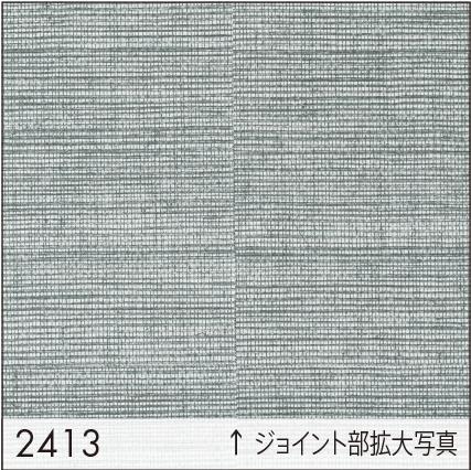 SW2413