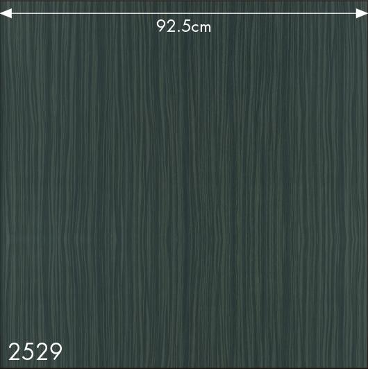 SW2529